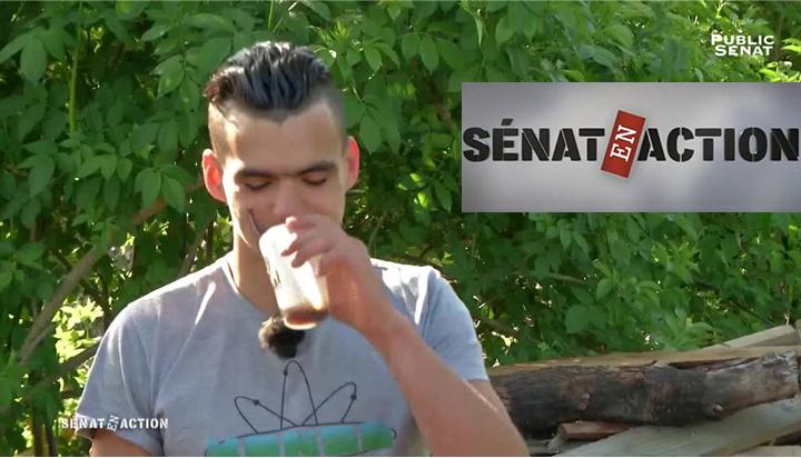 r956_9_senat-en-action-2.jpg